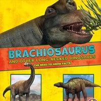 Brachiosaurus and Other Big Long-Necked Dinosaurs - Rebecca Rissman