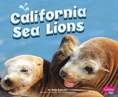 California Sea Lions - Megan Cooley Peterson