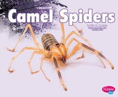 Camel Spiders - Nikki Clapper