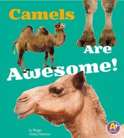 Camels Are Awesome! - Allan Morey
