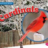 Cardinals - Lisa Amstutz