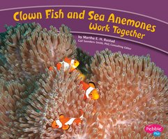 Clown Fish and Sea Anemones Work Together - Martha Rustad