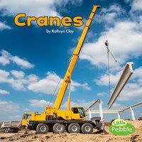 Cranes - Kathryn Clay