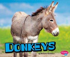 Donkeys - Michelle Hasselius