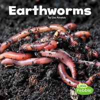 Earthworms - Lisa Amstutz