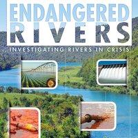 Endangered Rivers - Rani Iyer