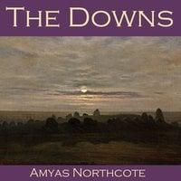 The Downs - Amyas Northcote