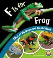 F Is for Frog - Lisa Amstutz