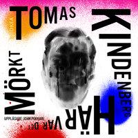 Här var det mörkt - Tomas Kindenberg