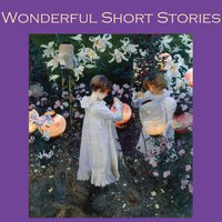 Wonderful Short Stories - Various Authors
