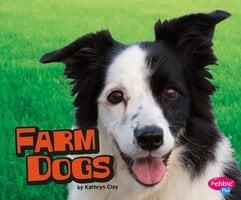 Farm Dogs - Kathryn Clay