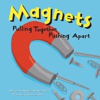 Magnets - Natalie Rosinsky
