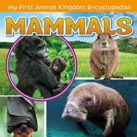 Mammals - Lisa Amstutz