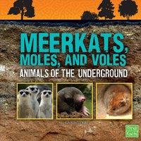 Meerkats, Moles, and Voles - Jody Rake