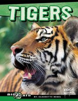 Tigers - Claudette Hegel