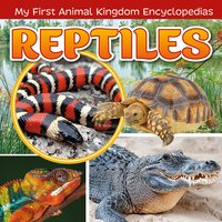 Reptiles - Janet Riehecky