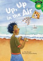 Up, Up in the Air - Molly Blaisdell