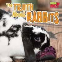 The Truth about Rabbits - Mary Colson