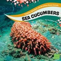 Sea Cucumbers - Jody Rake
