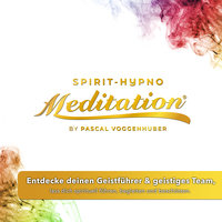 Entdecke deinen Geistführer & geistiges Team, lass dich spirituell führen, begleiten und beschützen. - Pascal Voggenhuber
