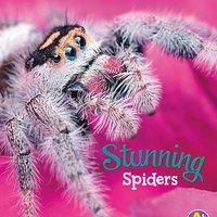 Stunning Spiders - Martha Rustad