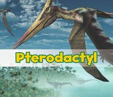 Pterodactyl - Daniel Nunn