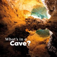 What's in a Cave? - Martha Rustad