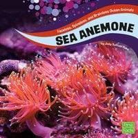 Sea Anemones - Jody Rake