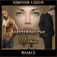 Partners – 'Mastering the Virgin' Part Two - Simone Leigh