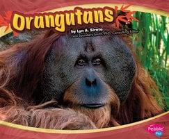 Orangutans - Joanne Mattern