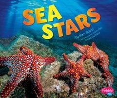 Sea Stars - Mari Schuh
