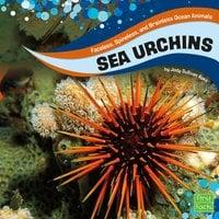 Sea Urchins - Jody Rake