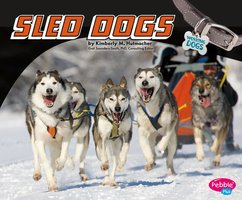 Sled Dogs - Kimberly Hutmacher