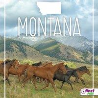 Montana - Jordan Mills