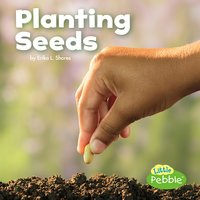 Planting Seeds - Kathryn Clay