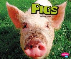 Pigs - Sheri Doyle