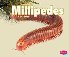 Millipedes - Nikki Clapper