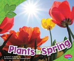 Plants in Spring - Martha Rustad