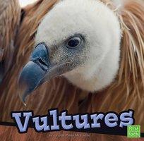 Vultures - Cecilia Pinto McCarthy