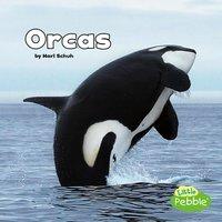 Orcas - Mari Schuh