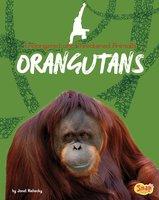 Orangutans - Janet Riehecky
