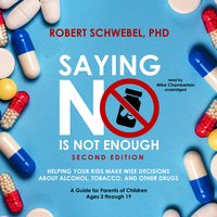 Saying No Is Not Enough (Second Edition) - Robert Schwebel