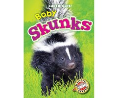 Baby Skunks - Megan Borgert-Spaniol