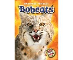 Bobcats - Megan Borgert-Spaniol