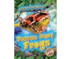 Poison Dart Frogs - Rachel Grack