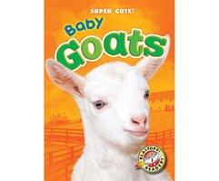 Baby Goats - Kari Schuetz