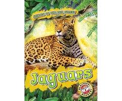 Jaguars - Rachel Grack