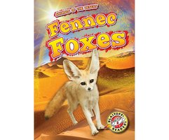 Fennec Foxes - Patrick Perish