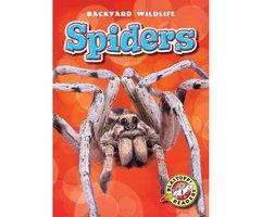 Spiders - Megan Borgert-Spaniol