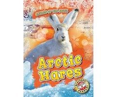 Arctic Hares - Rebecca Pettiford